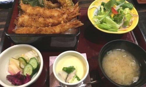 105日目「夏だ!プールだ!ダイエットだぁ~!!」