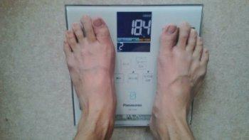 ライザップスタイル体脂肪率