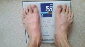 ダイエット成功体脂肪率